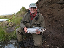 Icelandic salmon - I got my first one.. and the second... and many, meny more this year