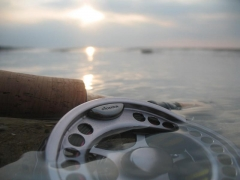 Reel almost underwater - A great example of the reel-and-water category