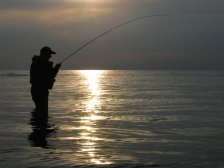 Silhouette - Sunsets make excellent backgrounds for silhouette pictures. Also ones with bent rods.
