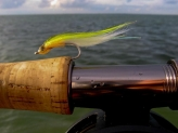 In the zone - Here the fly occupies its own space bounded by the horizon and the rod