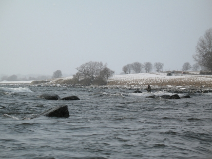 Cold and windy - Anybody who has fished a coast in this kind of weather knows that it's rough