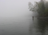 Fog and the vanishing horizon - The fog makes the water fill almost everything in this image with just the trees and the angler to break and create focus