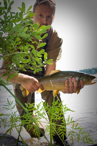 Brownie - A lovely brown trout - and Harri himself hiding behind a bush!