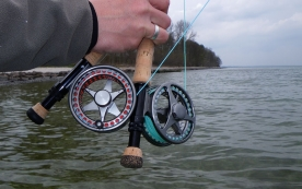 Danielsson reels - Swedish Danielsson reels are very popular for coastal fishing