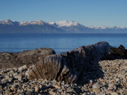 Lake impression - Rocks and logs