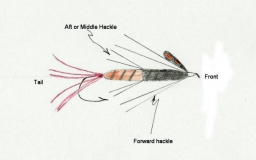 The Irish fly - The anatomy of the traditional Irish fly