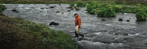 Kasper crossing th stream -
