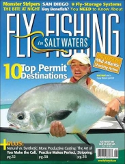 Fly Fishing Salt Waters cover -