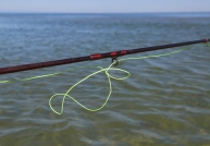 Tangle! - Sometimes a knot will form in the basket and shooting will stop when it hits the stripping eye on the rod