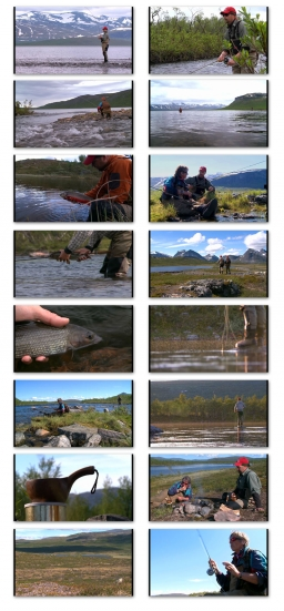 Stills from the video Swedish Lapland -
