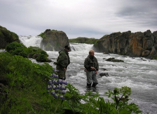 Laxá i Aðaldal - A famous Icelandic salmon river well suited for the Raven NJ