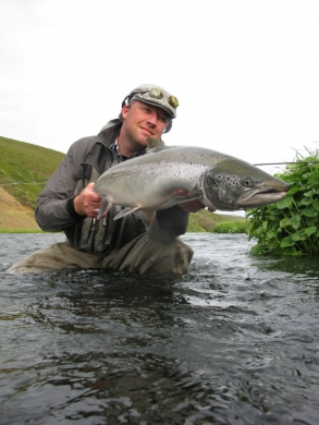 A perfect hitch caught salmon -