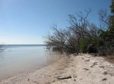 Long Key State Park - A quiet and idyllic ocean-side park