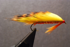 Mango - A colorful zonker for slow winter seatrout