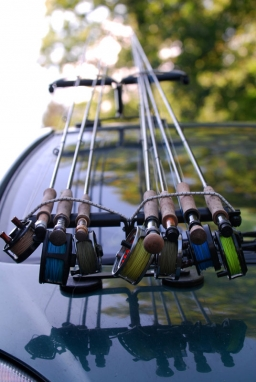 Gear galore - Danish coastal fly rods. You will most likely find that most of them are 6 weights