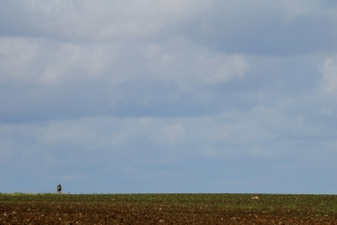 Alone - Even with 30 anglers around you can find solitued. This is German Kai Nolting on the horizon