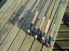 Low sun, long shadows - Four pike rods resting