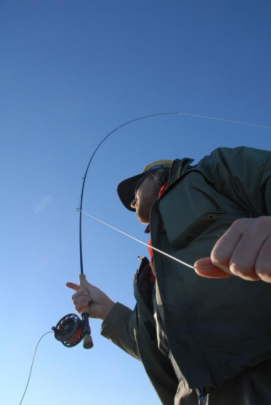 When casting - An alternative way of looking at the bent rod - while the angler is casting