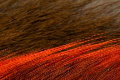 Bucktail - Bucktail is available in countless colors -- as well as the natural brown/white combination
