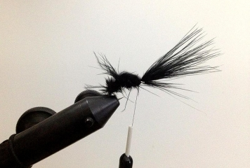 Step 6 - forward - Now tie the marabou forward...