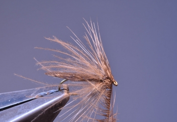 Step 12 - second hackle wrapped -