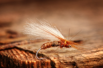 Potemkin - A famous Finnish dry fly pattern called Potemkin developed and tied by Matti Huitila. This version has an orange body to imitate the recently hatched insect. A simple pattern but extremely effective during this hatch.