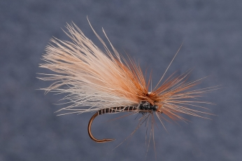 CdC dry - Another great dry fly pattern tied by Jani Aaltonen from Finland. Thick wing is made out of CdC which floats this pattern very well.