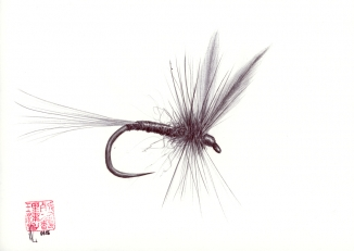 Dry fly 2 -