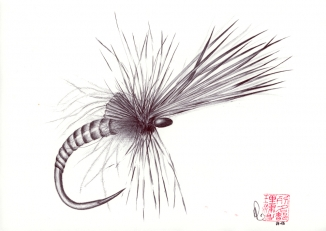 Kings river caddis - Tied by David Stenström