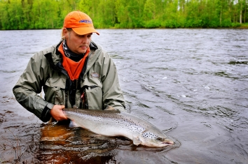A 15 lbs salmon - Jerkko Ahtinen caught this nice 15 lbs salmon from Häggholmselet pool.