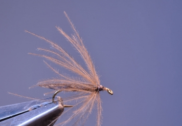 Step 8 - CDC hackle done -