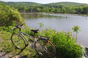 The bike by the pond -