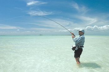 After the strike - Once you have set the hook with a strip strike, you have immediate contact with the fish and can fight it - or let it run as in this case with a bonefish