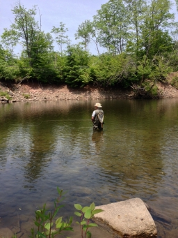Tubes in the Catskills - Richard Katzman in a Catskill stream, most likely fishing a tube fly
