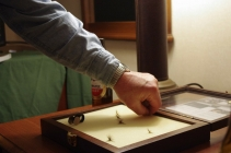 Selecting one of the remaining flies -