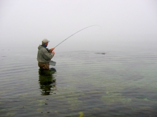 A take in the fog - Spring often means calm and foggy weather, which many anglers dislike. But the fish are still there.