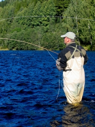 Casting to grayling and trout - Yours truly casting a caddis in the pursuit of grayling and trout in the Swedish Klarälv