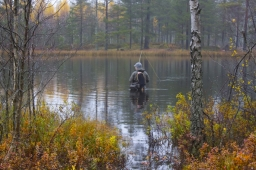 Autumn lake fishing - Fishing in the Swedish lakes in Hökensås