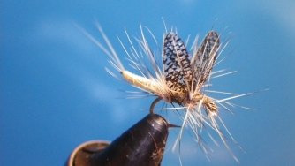 Mayfly - With clear wings from Silver Tip Fly Company