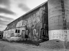 "Slow Down - Before they spray painted ""Slow Down\"", it used to say \""No Turkey Hunting. Don\'t Even Ask.\"" We didn\'t. And we do. Always wonder what is in that building."