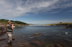 Mullet fishing in Ireland -