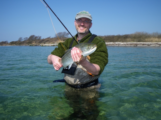 My most recent decent fish - Even when I fished most, sea trout like this weren\'t caught on every trip