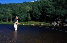 Salmon fishing - When fishing down and across, simply follow the line with the rod, and lift gently when you feel weight