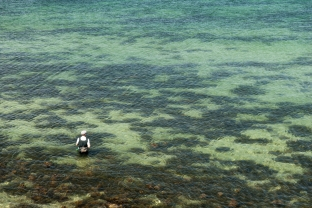 Sea trout country - A perfect mix of sand and sea weed
