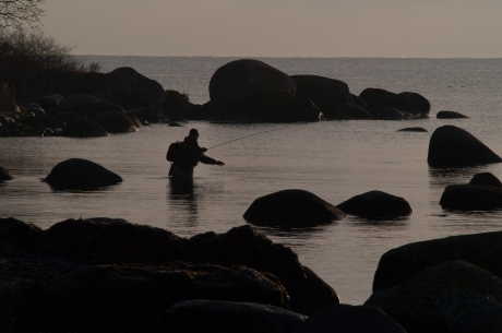 Amongst the rocks - The Swedish Baltic archipelago is an exciting place to chase pike