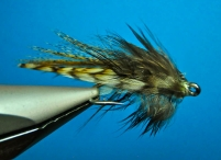 Le Petite Decapod - Bushy feather and you get a squiddy expression