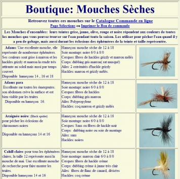 "Efly - The web site is in french and has a very ""home made"" look"