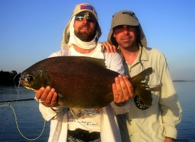 Pacu - A large pacu caught on a Malbran