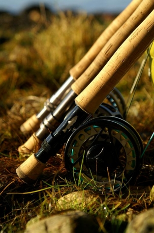 A small collection - Nicely lined up during a pause in the fishing, these rods just begged for a photo