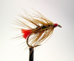 Palmered - The full body or palmer hackle makes for a classical wet fly, almost in the Woolly Bugger tradition.